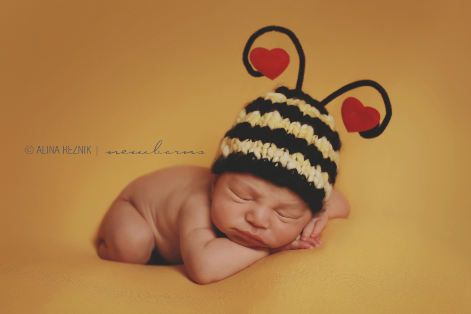 Newborn baby sleeping during a bumble bee themed photography shoot by Alina Reznik newborn photographer covering New York Tri State Area