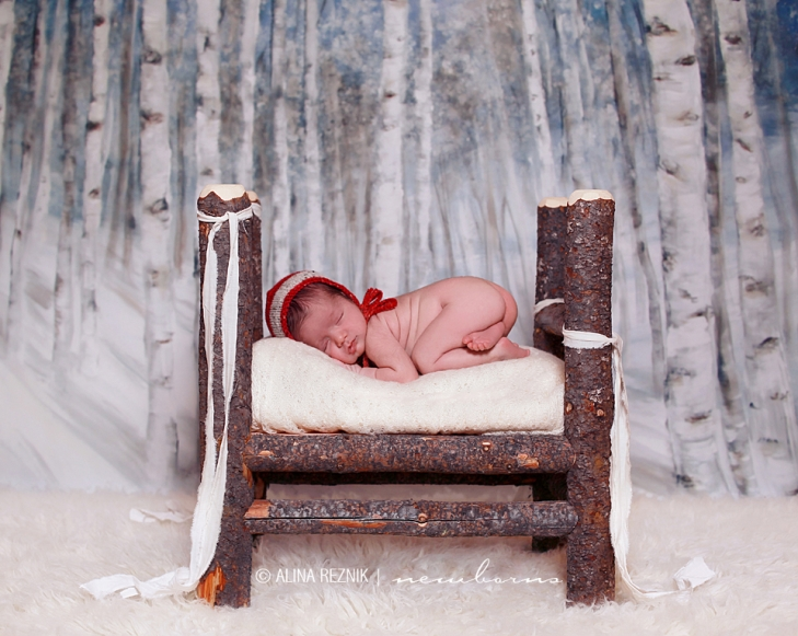 Newborn sleeping in a hand made log bed surrounded by birch treest.  Photograph by Alina Reznik who sepcializes in newborn photography
