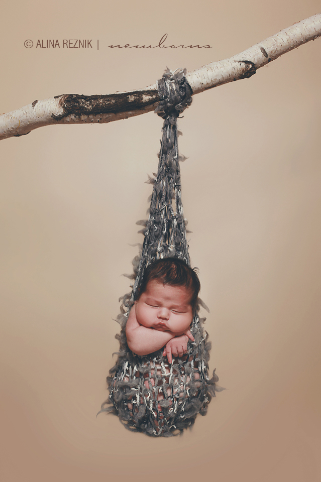 Alina Reznik a New York based newborn photographer positioned a Newborn swinging on a tree branch in a newborn hammock